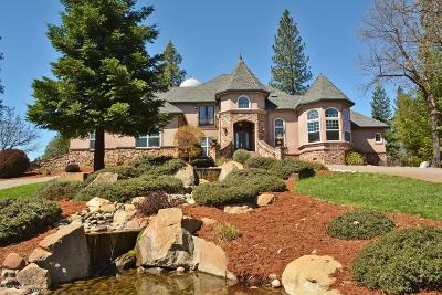 Grass Valley Single Family Home For Sale: 12846 Hoppy Hollow Road