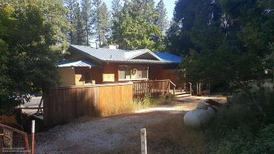 Grass Valley Single Family Home For Sale: 11605 Lower Colfax Road