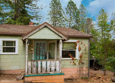 Nevada County Single Family Home For Sale: 10299 Adam Avenue