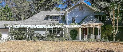 Nevada City Single Family Home For Sale: 10969 Success Cross Road