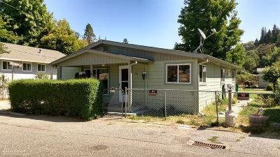Grass Valley Single Family Home For Sale: 109 Kendall Street