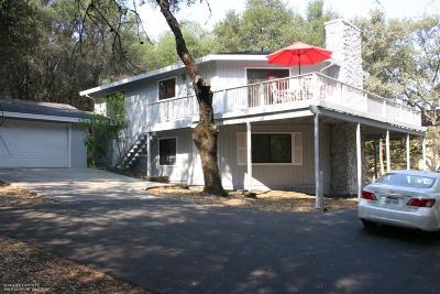Penn Valley Single Family Home For Sale: 12656 Roadrunner Drive