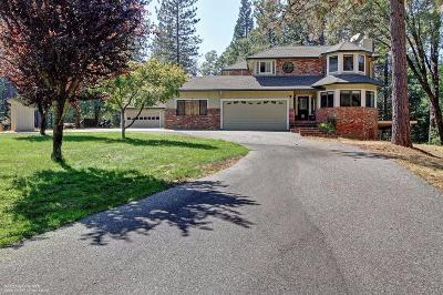 Nevada City Single Family Home For Sale: 14521 Bears End Drive