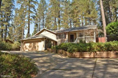 Grass Valley Single Family Home For Sale: 10657 Partridge Road
