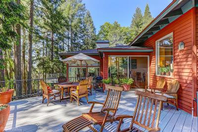 Nevada City CA Single Family Home For Sale: $1,149,000