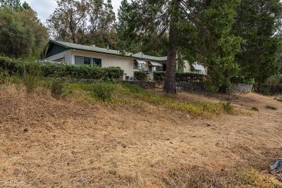 Nevada County Single Family Home For Sale: 13974 Cartwright Way