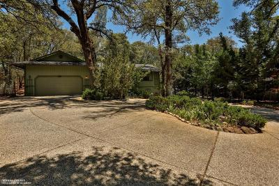 Nevada County Single Family Home For Sale: 19039 Chaparral Drive
