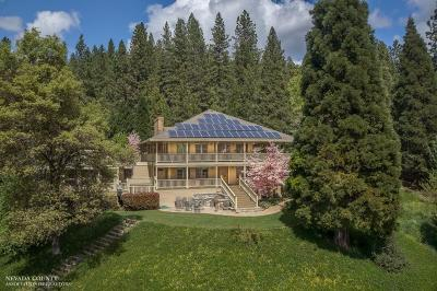 Nevada City CA Single Family Home For Sale: $1,595,000