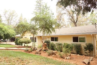 Grass Valley Single Family Home For Sale: 10520 Kenwood Drive