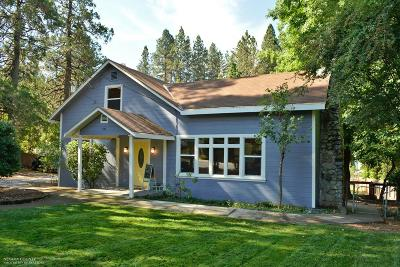 Grass Valley Single Family Home For Sale: 554 Whiting Street
