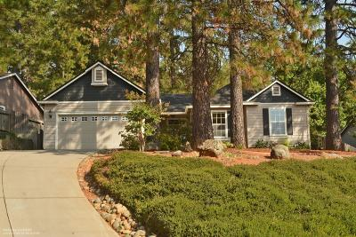 Grass Valley Single Family Home For Sale: 159 Scotia Pines Circle
