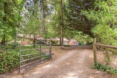 Grass Valley Single Family Home For Sale: 13503 Peardale Road