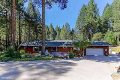 Grass Valley Single Family Home For Sale: 13364 Mule Canyon Road