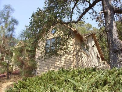 Penn Valley CA Single Family Home For Sale: $189,000