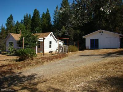 Nevada County Single Family Home For Sale: 16963 Hwy 49