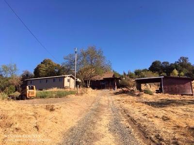 Auburn Single Family Home For Sale: 1000 Bonnie Lane