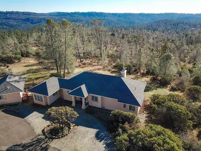 Nevada County Single Family Home For Sale: 14998 Monte Vista Drive