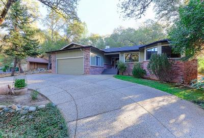 Nevada County Single Family Home For Sale: 19205 Chaparral Drive