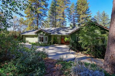 Nevada County Single Family Home For Sale: 20889 Tiger Tail Road