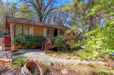 Nevada County Single Family Home For Sale: 10165 Keenan Way