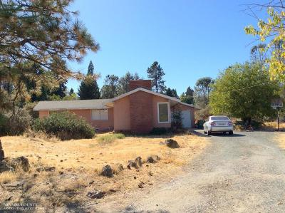 Grass Valley Single Family Home For Sale: 946 Donald Avenue