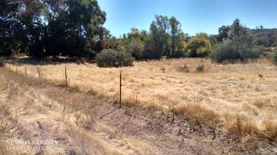 Residential Lots & Land For Sale: 20248 Middle Keystone Court