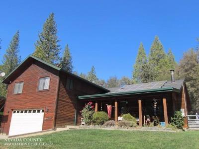 Nevada City Single Family Home For Sale: 10161 Sun Shadow Circle