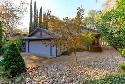 Auburn Single Family Home For Sale: 11917 Torrey Pines Drive