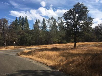 Oregon House, Dobbins Residential Lots & Land For Sale: 12311 Regent Way