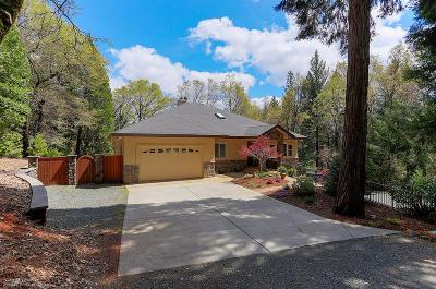 Nevada City CA Single Family Home For Sale: $739,000