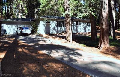 Nevada City Single Family Home For Sale: 13306 Red Dog Road