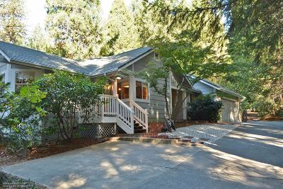 Nevada City Single Family Home For Sale: 13382 Red Dog Road
