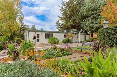 Grass Valley Single Family Home For Sale: 20586 Meyer Road