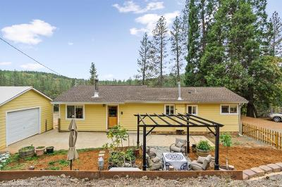 Nevada City Single Family Home For Sale: 13850 Owl Creek Road