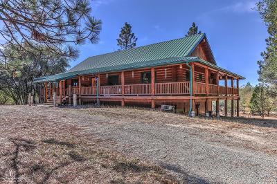 Nevada City Single Family Home For Sale: 21748 Hyatt Road