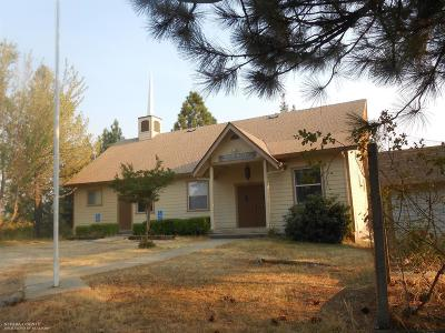 Grass Valley Single Family Home For Sale: 20641 Red Dog Road