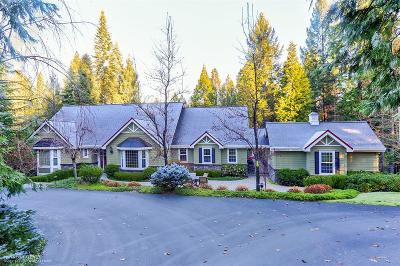 Nevada City Single Family Home For Sale: 10631 Jasper Agate Court