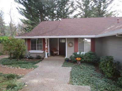 Grass Valley Single Family Home For Sale: 270 Horizon Circle