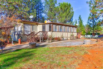 Grass Valley Single Family Home For Sale: 12312 Hilltop Terrace