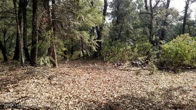 Nevada City CA Residential Lots & Land For Sale: $169,000