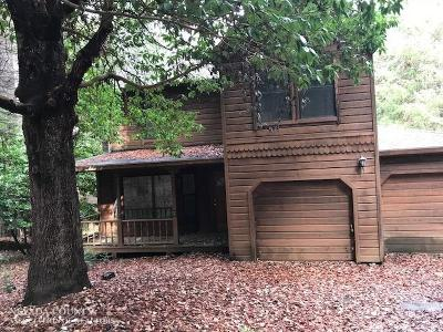 Nevada City Single Family Home For Sale: 12114 Big Blue Road