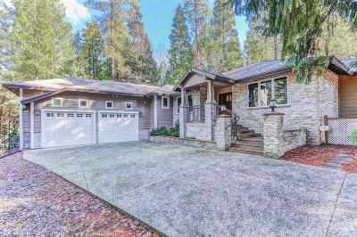 Nevada City Single Family Home For Sale: 10805 Jasper Agate Court
