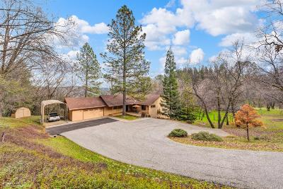 Nevada County Single Family Home For Sale: 20524 Buck Ridge Road