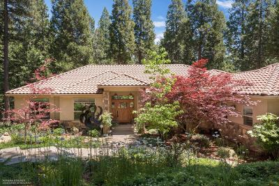 Nevada County Single Family Home For Sale: 13729 Altair Drive