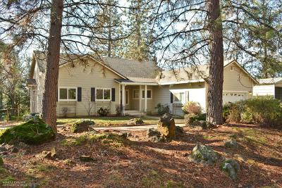 Nevada County Single Family Home For Sale: 18215 Jamie Lee Court