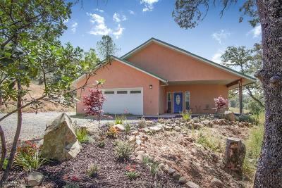 North San Juan Single Family Home For Sale: 20516 Pleasant Valley Road
