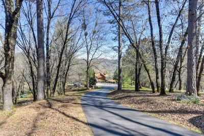 Single Family Home For Sale: 20472 Buck Ridge Road