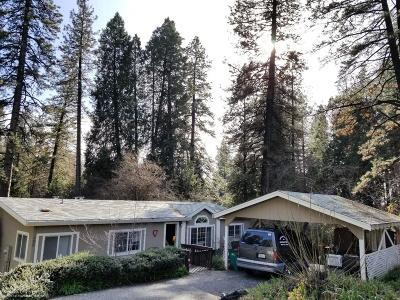 Grass Valley Single Family Home For Sale: 139 E Empire Street