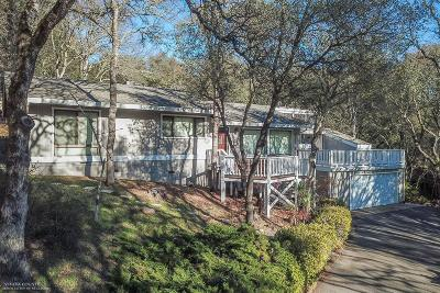 Nevada County Single Family Home For Sale: 18979 Chaparral Drive