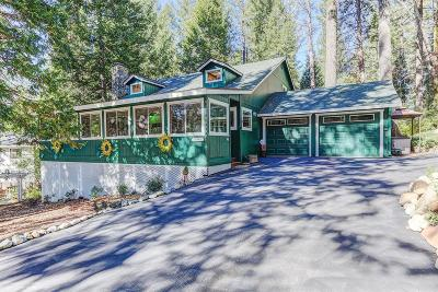 Nevada City Single Family Home For Sale: 14964 Lake Lane